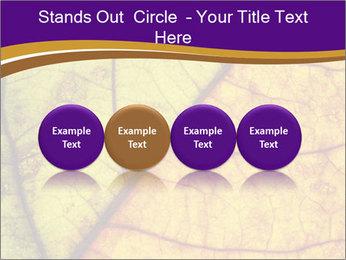 0000061972 PowerPoint Template - Slide 76