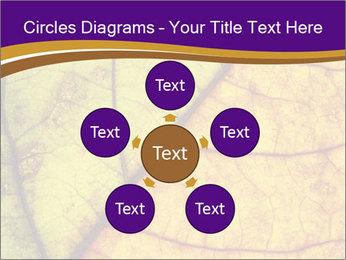 0000061972 PowerPoint Template - Slide 78