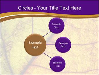 0000061972 PowerPoint Template - Slide 79