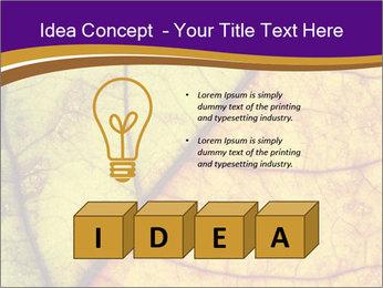 0000061972 PowerPoint Template - Slide 80