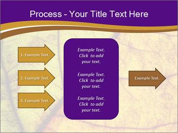 0000061972 PowerPoint Template - Slide 85