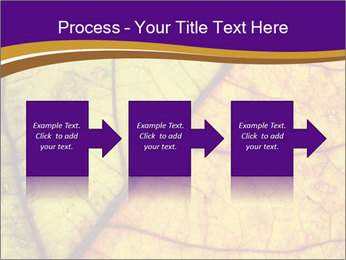 0000061972 PowerPoint Template - Slide 88
