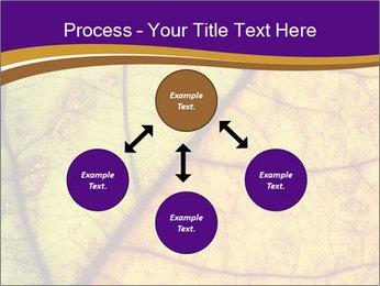 0000061972 PowerPoint Template - Slide 91