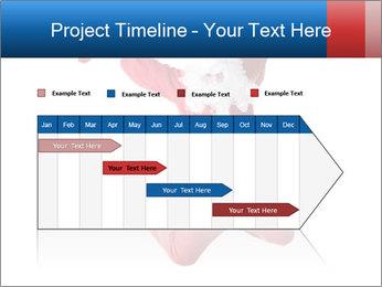 0000061977 PowerPoint Template - Slide 25