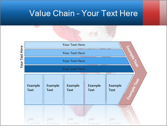 0000061977 PowerPoint Template - Slide 27
