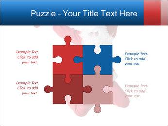0000061977 PowerPoint Template - Slide 43