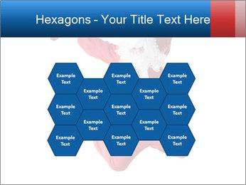 0000061977 PowerPoint Template - Slide 44