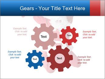0000061977 PowerPoint Template - Slide 47