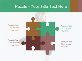 0000061981 PowerPoint Template - Slide 43