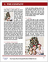0000061989 Word Template - Page 3