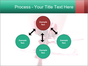 0000061995 PowerPoint Templates - Slide 91