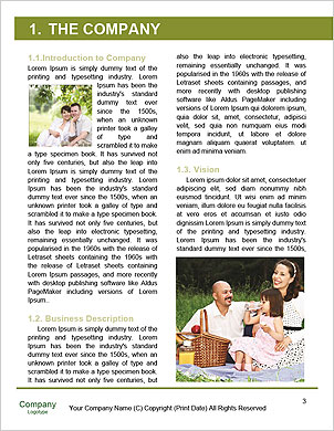 0000062008 Word Template - Page 3