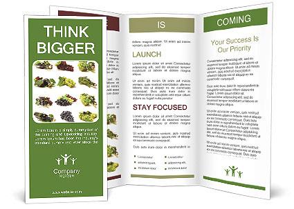 0000062036 Brochure Template
