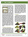 0000062036 Word Template - Page 3