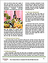 0000062036 Word Template - Page 4