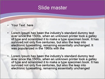 0000062048 PowerPoint Templates - Slide 2