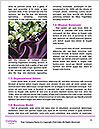 0000062052 Word Templates - Page 4