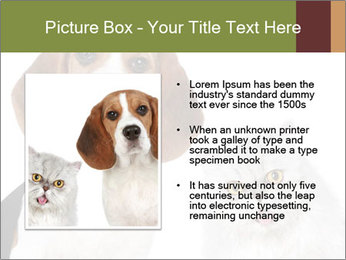 0000062058 PowerPoint Templates - Slide 13