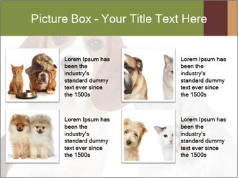 0000062058 PowerPoint Templates - Slide 14