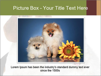 0000062058 PowerPoint Templates - Slide 15