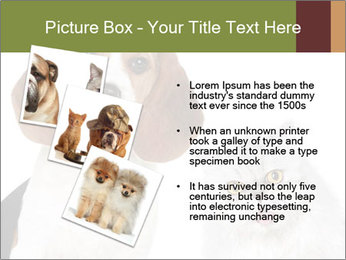 0000062058 PowerPoint Templates - Slide 17