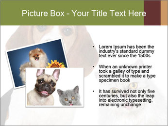 0000062058 PowerPoint Templates - Slide 20