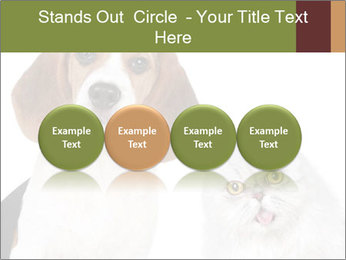 0000062058 PowerPoint Templates - Slide 76