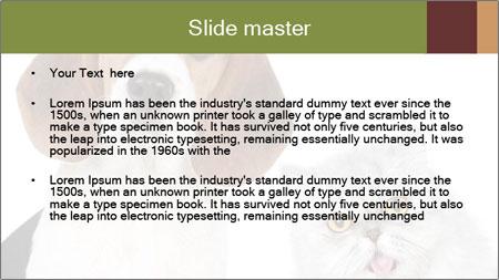 0000062058 PowerPoint Template - Slide 2
