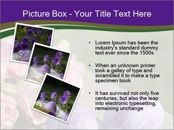 0000062062 PowerPoint Template - Slide 17