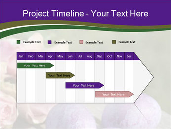 0000062062 PowerPoint Template - Slide 25