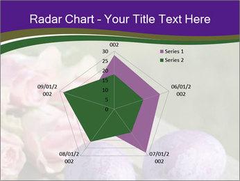 0000062062 PowerPoint Template - Slide 51