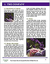 0000062062 Word Templates - Page 3