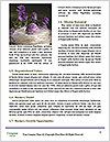 0000062062 Word Template - Page 4