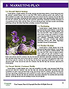 0000062062 Word Template - Page 8