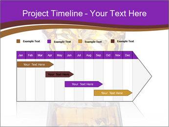0000062069 PowerPoint Template - Slide 25