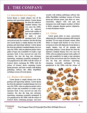 0000062076 Word Template - Page 3