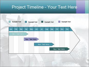 0000062083 PowerPoint Template - Slide 25