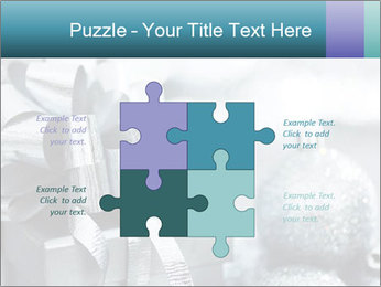 0000062083 PowerPoint Templates - Slide 43