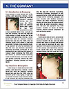 0000062090 Word Template - Page 3