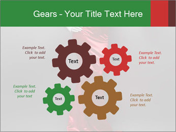 0000062095 PowerPoint Template - Slide 47