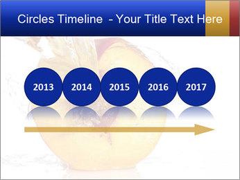 0000062101 PowerPoint Templates - Slide 29