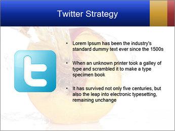 0000062101 PowerPoint Templates - Slide 9