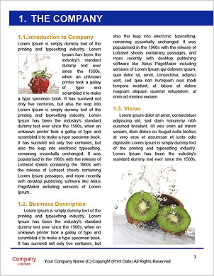 0000062101 Word Template - Page 3