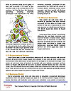 0000062101 Word Template - Page 4