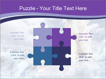 0000062106 PowerPoint Template - Slide 43