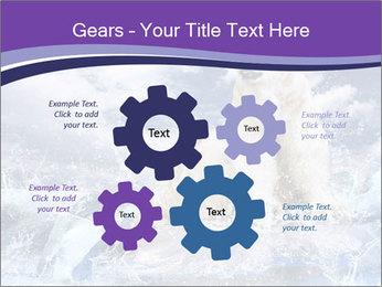 0000062106 PowerPoint Template - Slide 47
