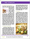 0000062114 Word Template - Page 3