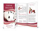 0000062116 Brochure Templates