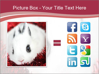 0000062116 PowerPoint Template - Slide 21
