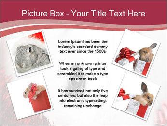 0000062116 PowerPoint Template - Slide 24
